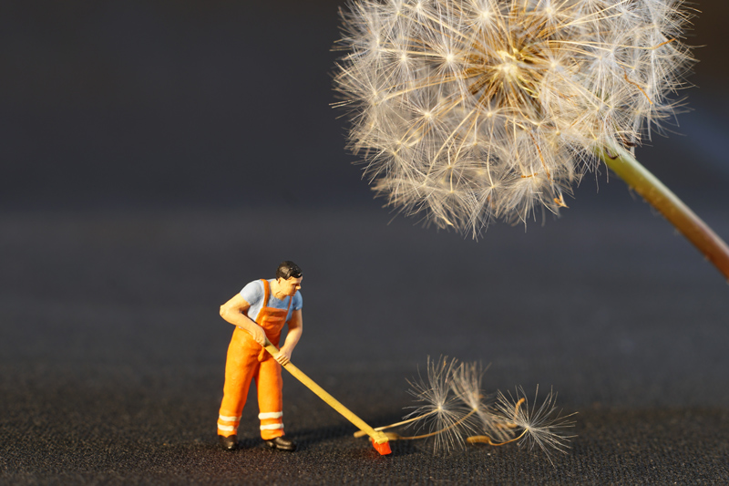 Photo of little toy worker brushing dandelion seeds